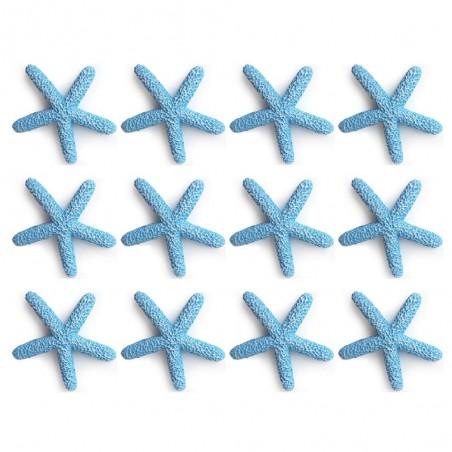 Hervit busta 12 stelle marine resina blu Ø 2cm - Candida ...